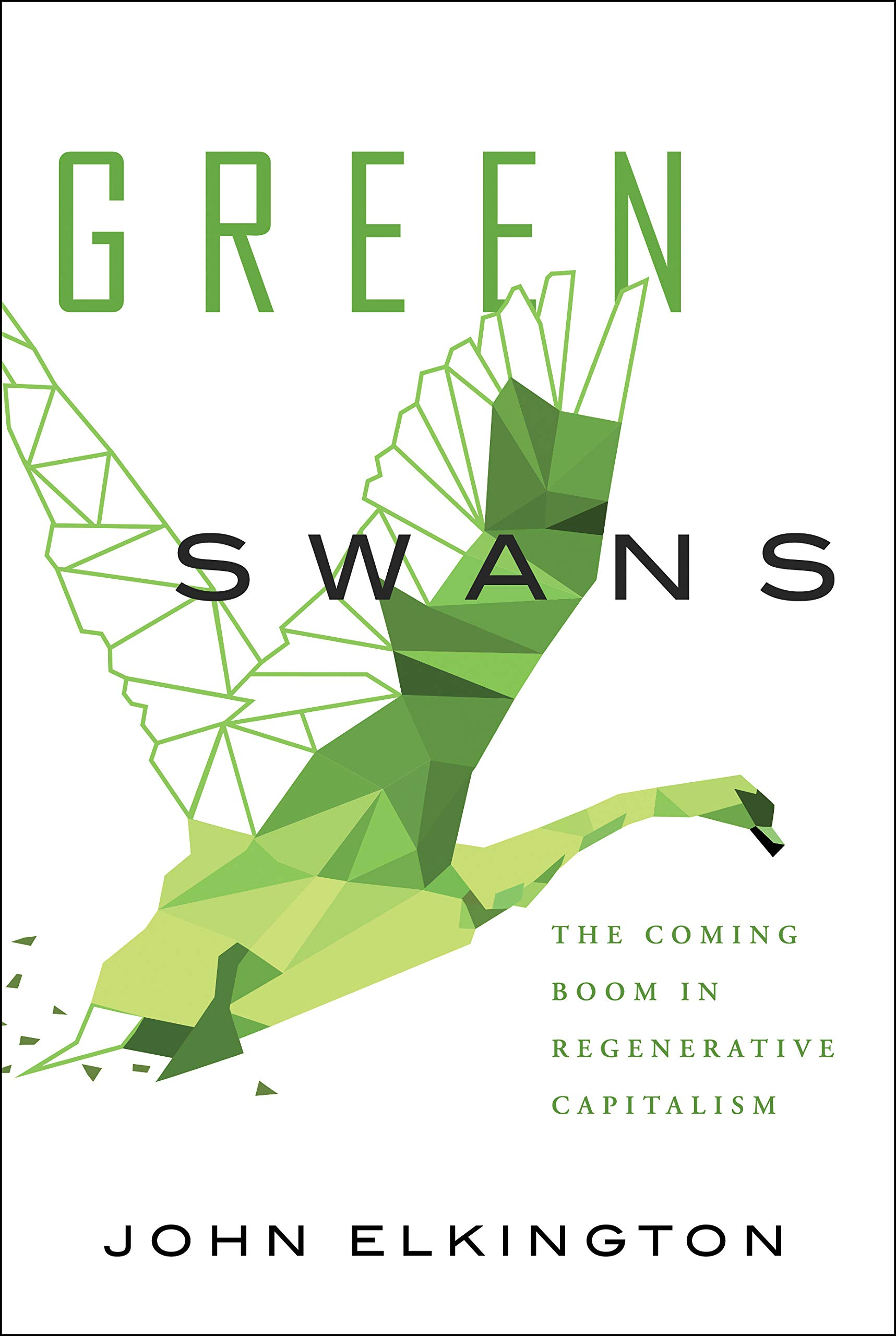 Green Swans: The Coming Boom in Regenerative Capitalism.